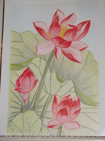 А3 бумага цветные карандаши