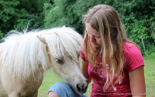 девочка и маленькая лошадка