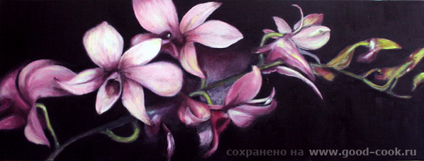 оррхидеи