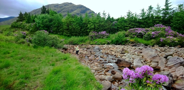 Glennacally river