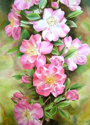 Уроки по рисованию Рисуем цветными карандашами Магнолия - урок от Михаила Рисуем цветы от Михаила У... - 7