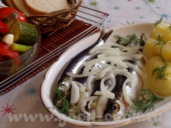 Сардины соленые Кукуруза тушеная,пикантная