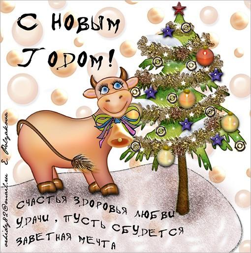 Наташенька, зайка, с Новым годом тебя и твою семью