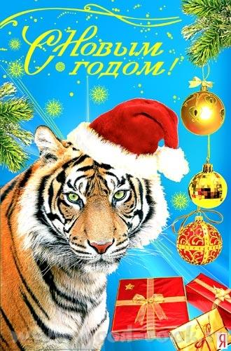 поздравляю Вас и Вашу семью с Новым годом