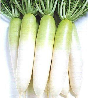 Это что-то между редькой и редиской, китайский овощ, длинная белая редька, вот так выглядит