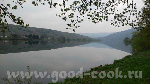 Утро над Мозель: Кохэм, замок на берегу, в утреннем тумане: Замок Эльз, находится немного в стороне... - 2