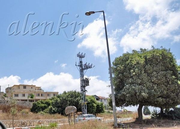 Раскидистые холмы Кармеля, усеянные ливанскими кедрами, фисташковыми деревьями успокаивают глаза, у...