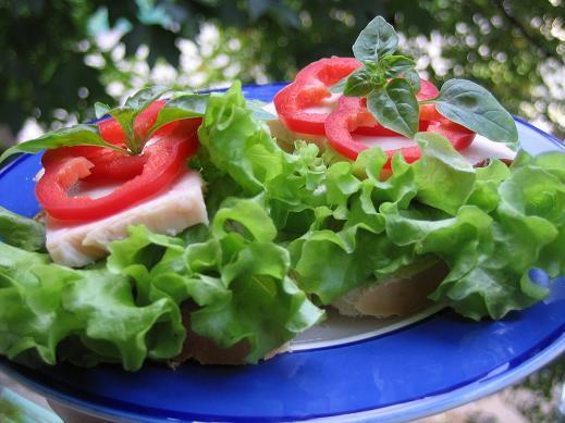 два завтрака просто бутеры с куриной грудкой,перцем и салатом и яичница в хлебе,вырезать мякушку и...