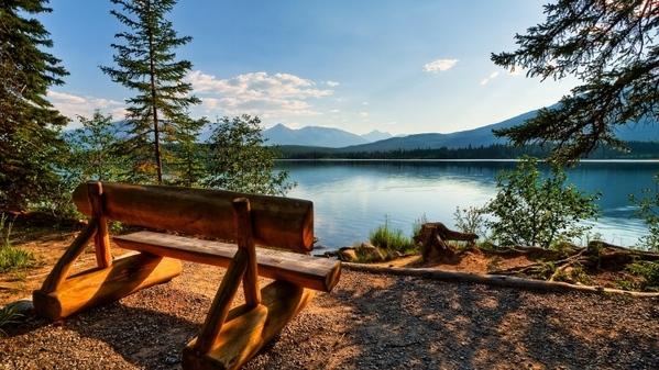 Продолжение торрентов Великолепные пейзажи леса может кому для вдохновения нужны Картины Антонова...