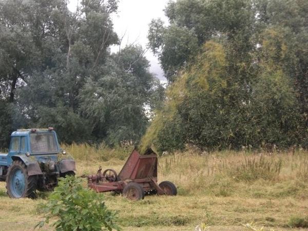 пасиб, Ленусь, ага просторы - у нас же домик в деревне, а там не воть тебе садовое тов-во по 6 сото...