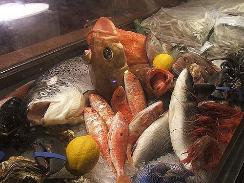 """Вот это """"рыбная"""" компания у них такие магазины прикольные, там, по-моему все можно найти: бедные ры... - 3"""