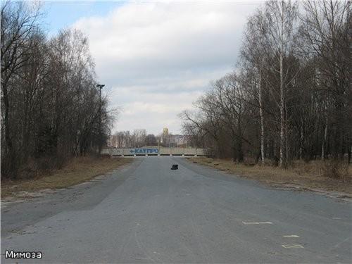 Дорога от стадиона Кирова к Финскому заливу Продолжение следует