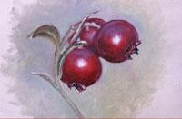 Уроки по рисованию Уроки рисования карандашом от Бетти Эдвардс Ягода-брусника от Михаила Урок зима...