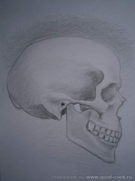 череп3