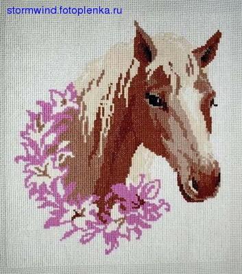 Вот такая лошадь: И Риолис, кажется