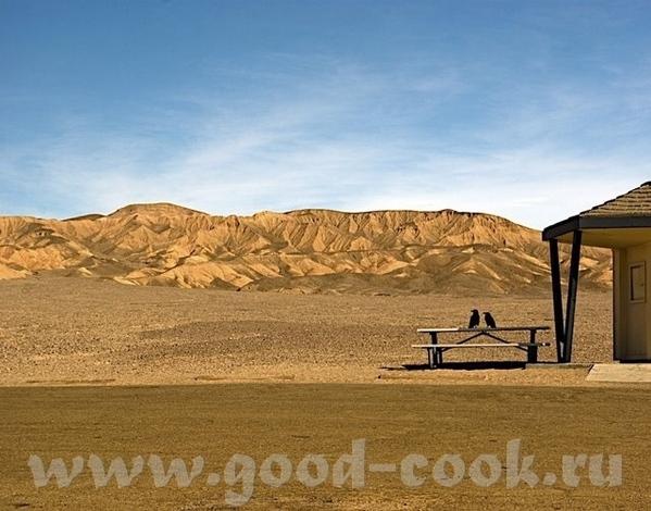 Часть 4 - Долина Смерти или Диснейленд для любителей природы - 2