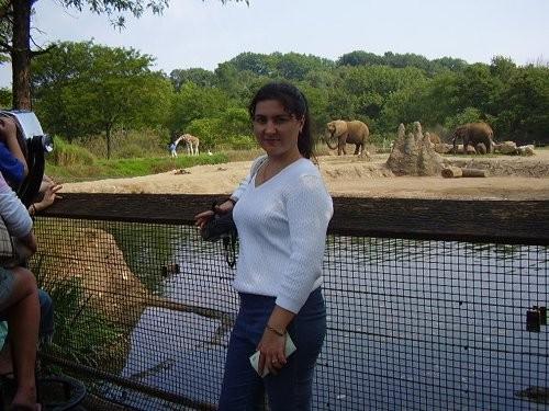 Гуляли по Питтсбургскому зоопарку, по ночному Питтсбургу, по нескольким паркам с озерами и прекрасн...