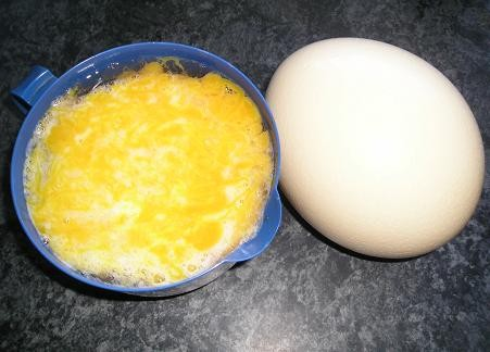 Омлет из страусиного яйца