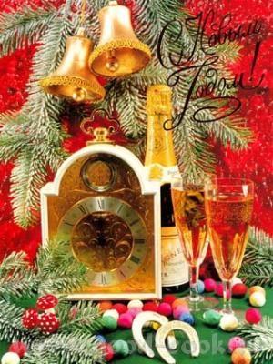 Аня, поздравляю тебя и твою семью с Новым 2009 годом