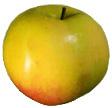 Плоды выше средних (масса 120г - 4