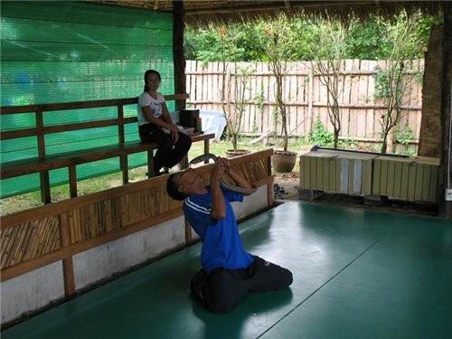 шоу со змеями и крокодилами очень популярные в Таиланде вот одно из них поцелуй кобры а это рыбки-б...