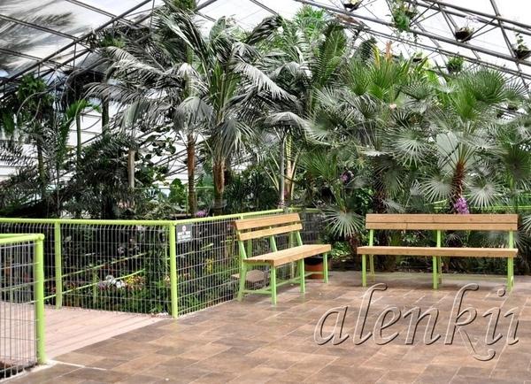 Среди растений стоят скамейки, где можно присесть отдохнуть и полюбоваться окружающей красотой - 3