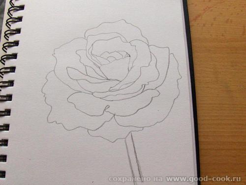 Мне во второй картинке понравилось как мистически прерывается стебель розы и исчезает ножка бокала