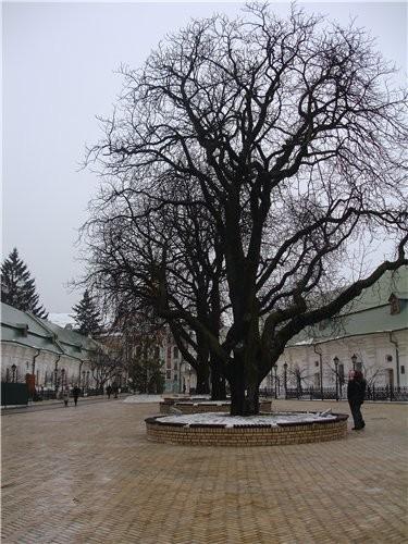 На прошлой неделе мы с мужем ездили в Киев и посетили там КИЕВО - ПЕЧЕРСКУЮ ЛАВРУ - 3