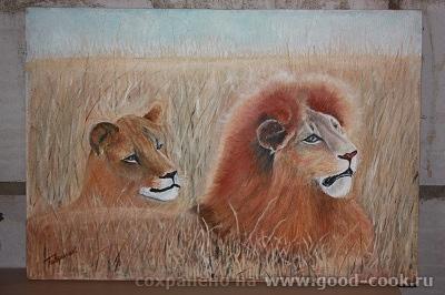 львы 1