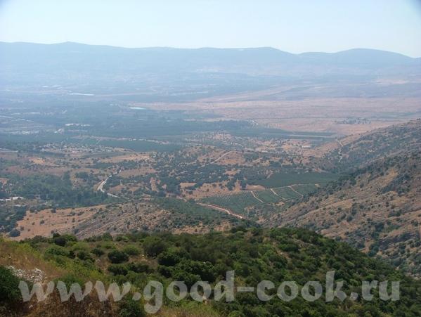В 1516 году Палестину захватили турки и она вошла в состав Оттоманской Империи, продолжалось ето до... - 5