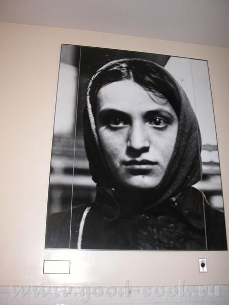По всему музею развешаны цитаты из дневников, книг, воспоминаний тех, кто прибыл на Елис - 4