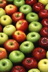 Содержание: Информация о яблоках: Летние сорта яблок от Нигуля Осенние сорта яблок от Нигуля Зимние...