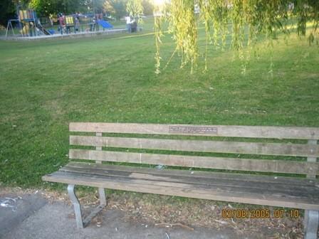 Это спортивные площадки, от количества и качества которых муж просто балдел Это парк неподалеку от... - 3