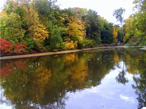 А это осень в нашем городе