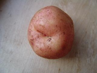 А теперь давайте попробуем вырезать розу из картофеля