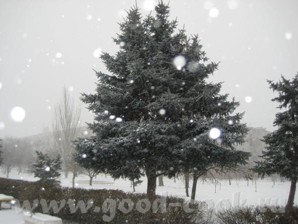 У нас тоже выпало сразу много снега и все еще метет, но таких морозов, как у вас , нет, всего-то -1... - 2