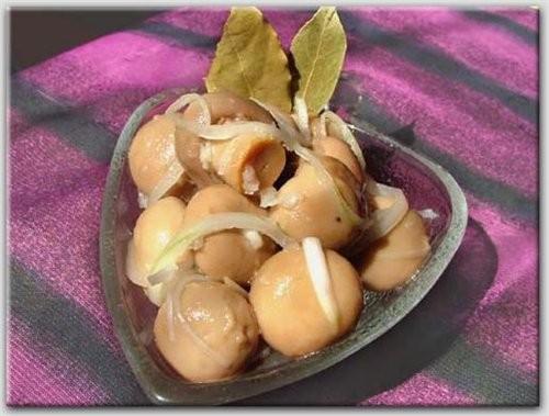АНТИПАСТИ(О) маринованные грибы 1 банка консервированных грибов (чистый вес ( без банки ) 400 гр