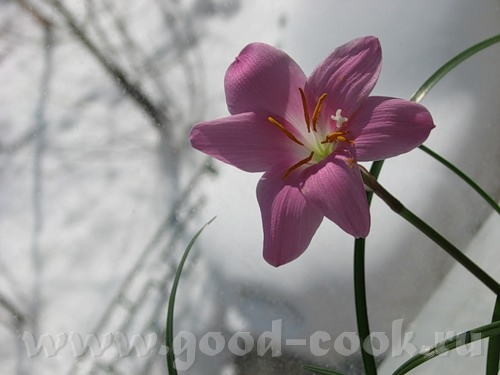 Весна в Екатеринбурге
