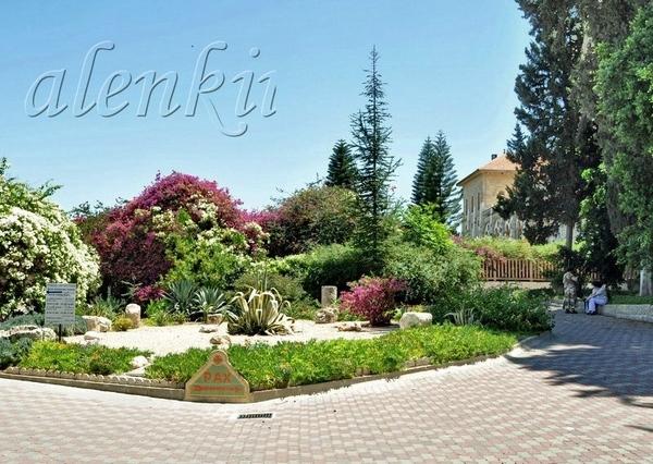 Оказавшись в нарядном и ухоженном дворе, утопающем в растительности, можно прогуляться по красивейш...