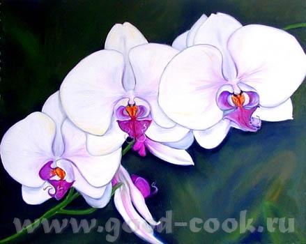 Вот нашла орхидею - 2