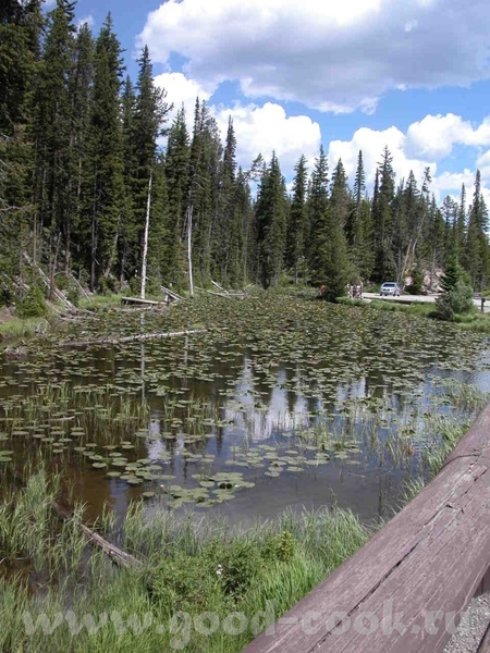 """Проехав по парку """"Grand Teton"""" мы в'ехали в """"Yellowstone"""" - 3"""