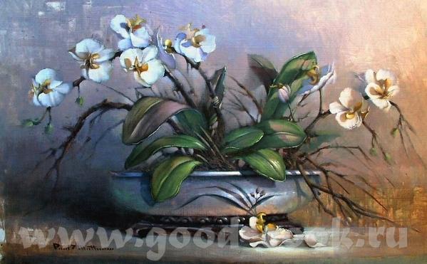 Надюнчик У меня есть такие картины с орхидеями может быть они вам понравится Martin Johnson