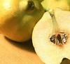 ЯГОДЫ И ФРУКТЫ Варенье, джем Использование Квиттина от Тритон Использование желирующего сахара от М... - 3