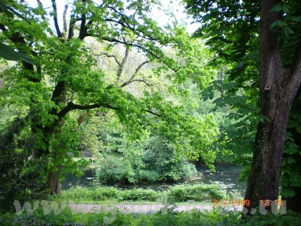 Около нас есть старый монастырь, а при нём парк - 6