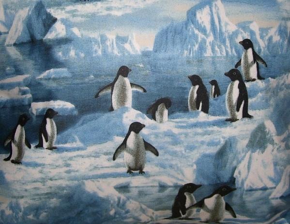 Ну а если нарисовать льда и воду- как Linda Besse Melissa Barrett А может быть что-то из этого по... - 6