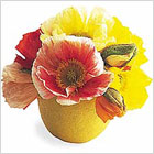Миниатюрные лимонные вазы