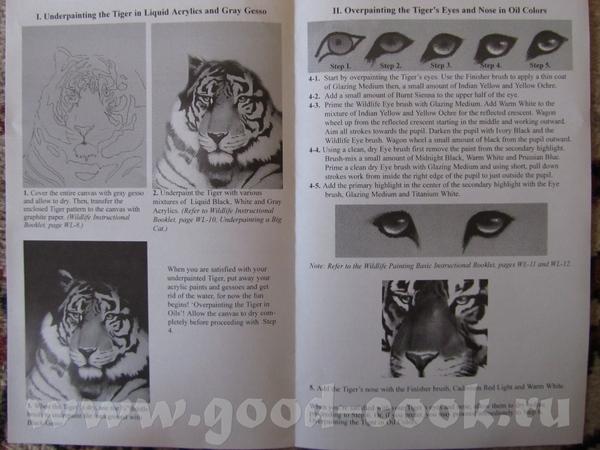 Тигр 1 Леопард (ой, ягуар стоит в названии) - 4