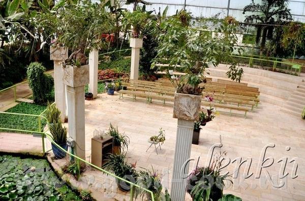 Среди растений стоят скамейки, где можно присесть отдохнуть и полюбоваться окружающей красотой - 4