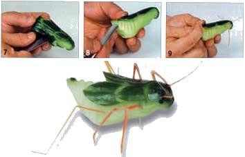 Тараканчики из огурца Как вы относитесь к тараканам - 3