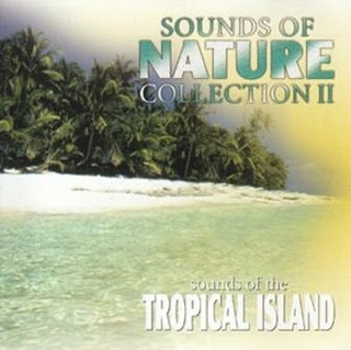 Dan Gibson's Solitudes - Tahiti - Voices of Paradise New Age | Mp3 | 320 kbps | 151 Mb | 2008 T... - 5